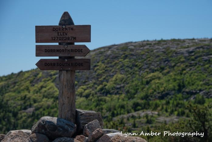 Dorr mountain summit (1 of 1).jpg