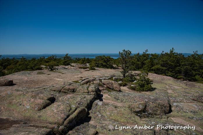 Dorr Mt view (1 of 1)