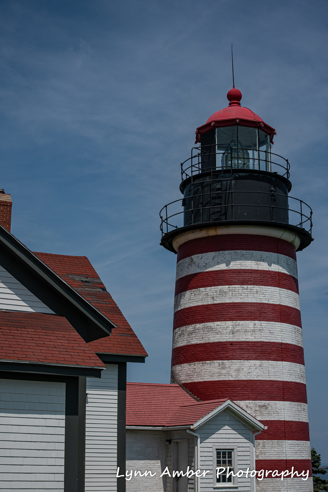 West Quoddy and Herring Cove (2 of 11)