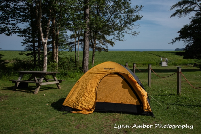 West Quoddy and Herring Cove (7 of 11)