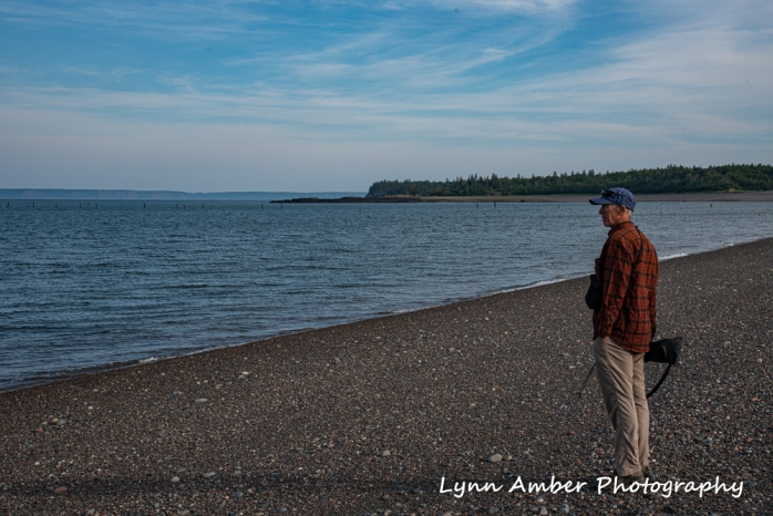 West Quoddy and Herring Cove (8 of 11)