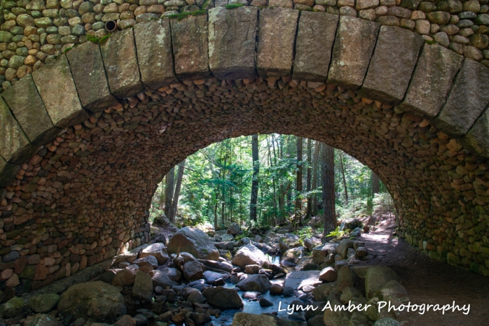 #3 A Bridge in the Park 2 (1 of 1)