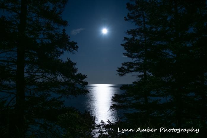 #7 Full Moon 9.14.19 (1 of 1)