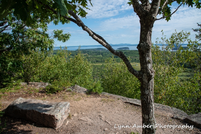 Emery Path resting bench (1 of 1)
