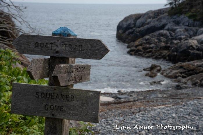 Isle au Haut Hike Day 2-3