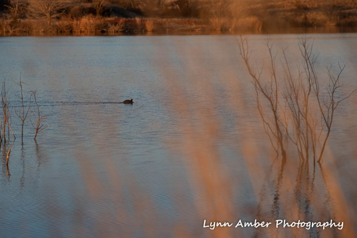 Elk City lake park 5
