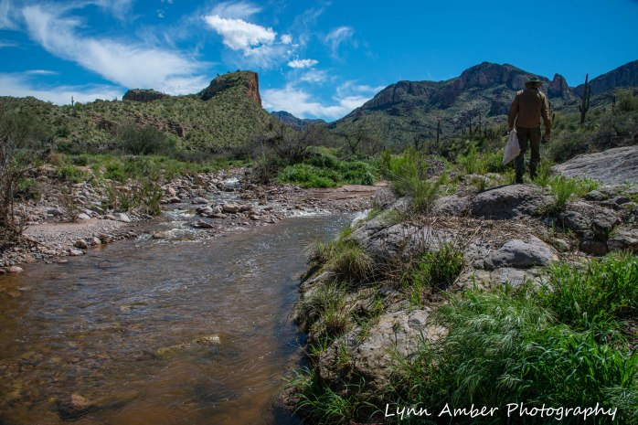 Assorted photos Tonto NF (4 of 13)