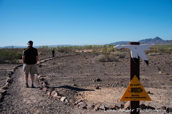 Cibola National Wildlife Refuge Desert Trail