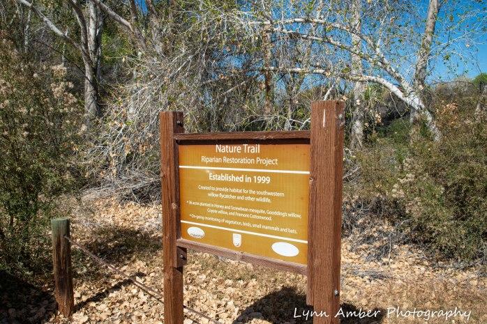 Cibola National Wildlife Refuge Nature Trail