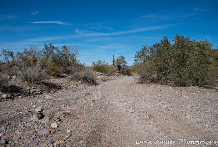 Hike to Dripping Springs (2 of 12)