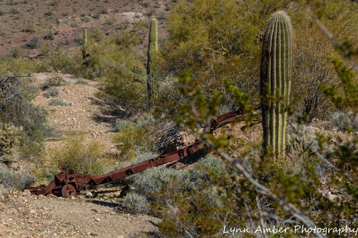 Hike to Dripping Springs (9 of 12)