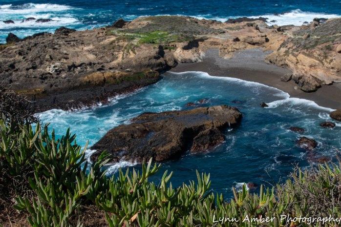 Point Lobos SNR (6 of 43)
