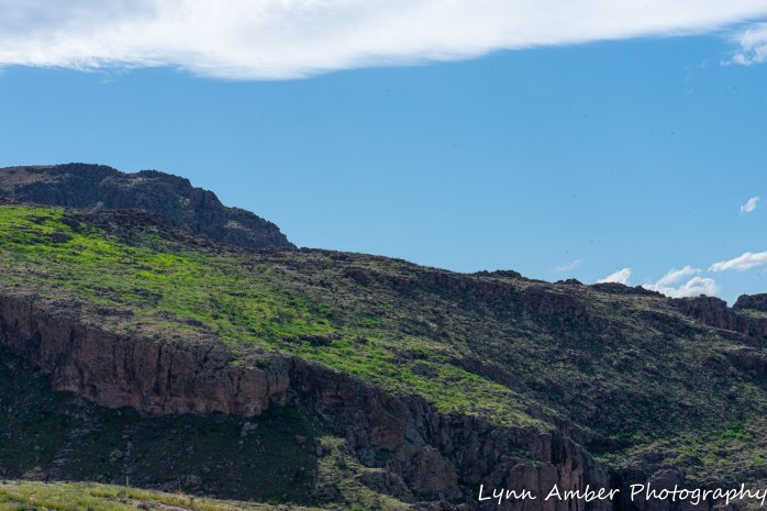 Superstition Mt hike and Fish Creek Hill (15 of 27)