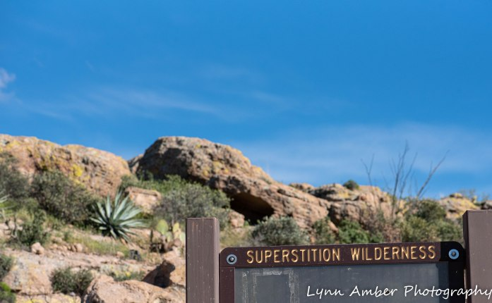 Superstition Mt hike and Fish Creek Hill (21 of 27)