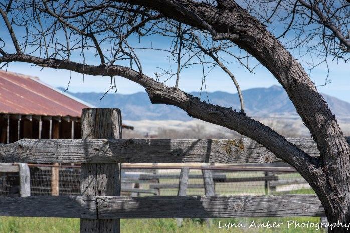 Empire Ranch architecture (8 of 8)