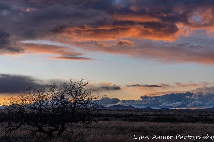 LCNCA sunset