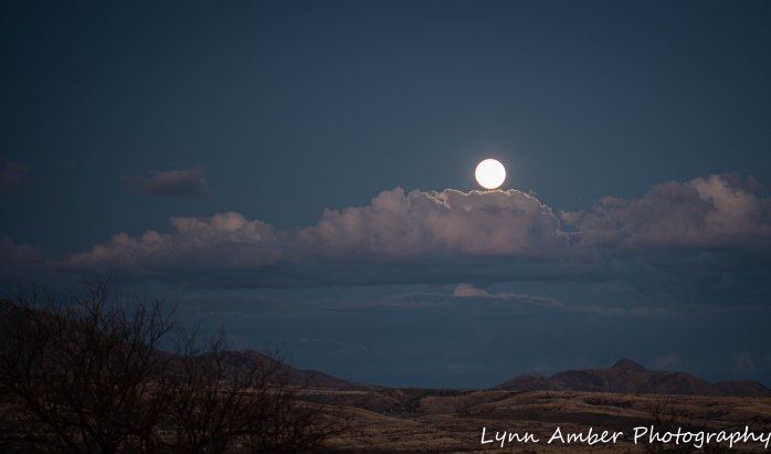 Moonrise at camp Cieneguita (3 of 7)