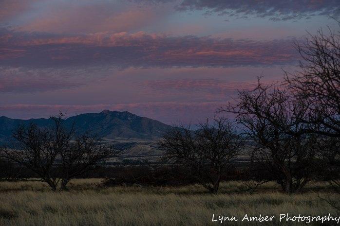 Sunset Cieneguita (1 of 3)