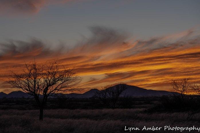 Sunset Cieneguita (3 of 3)