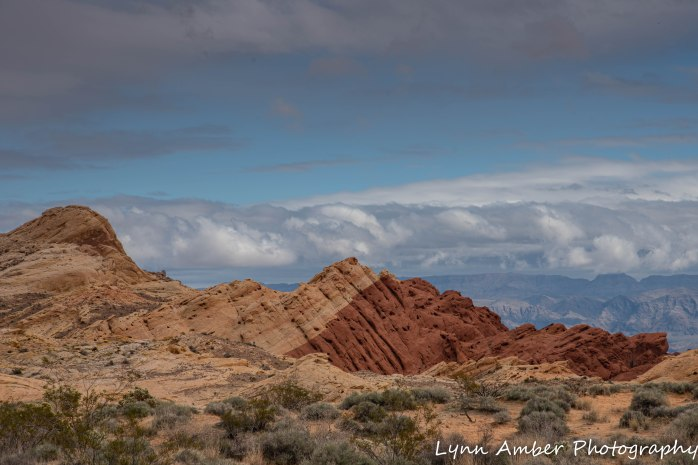 Valley of Fire Rainbow Silica Dome rd (2 of 4)