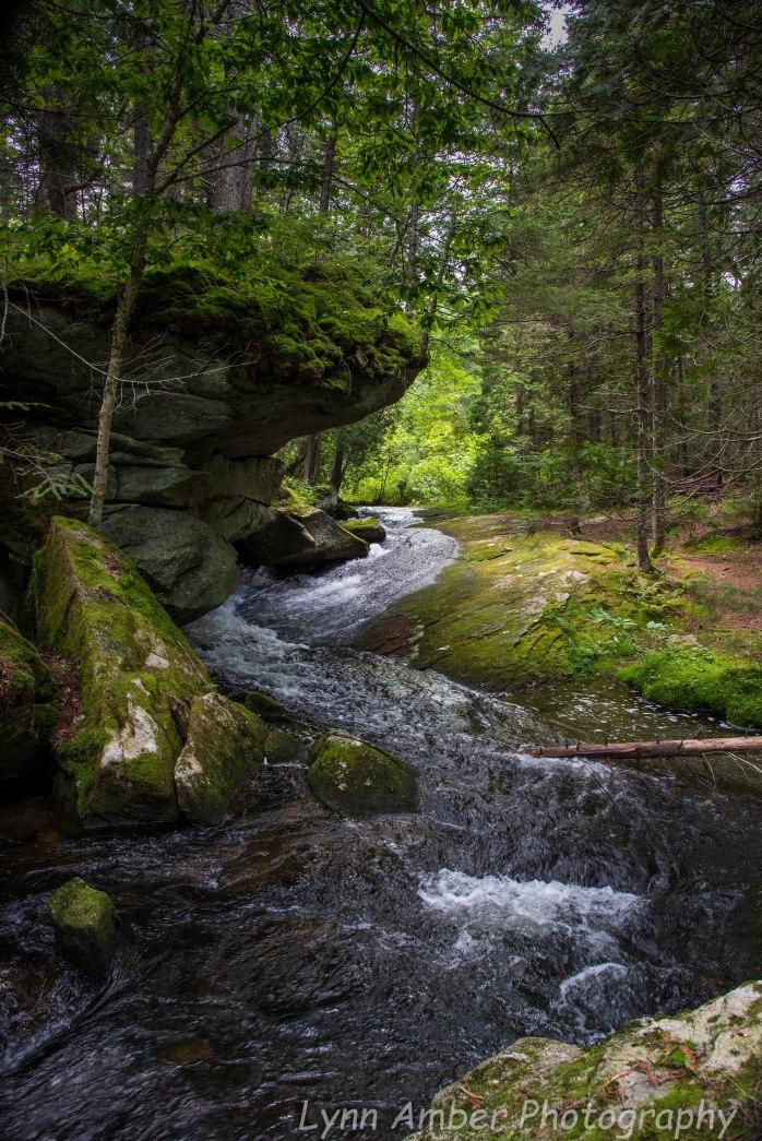 Hanging Rock Trail 3