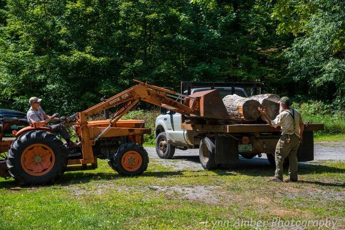 Wood Splitting Blog (3 of 11)