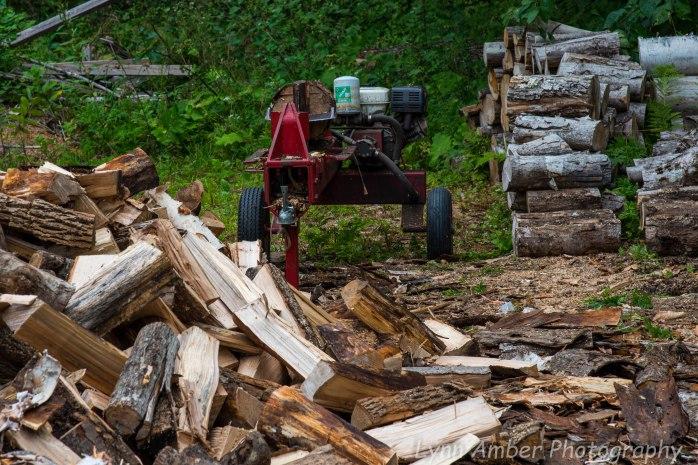 Wood Splitting Blog (3 of 4)