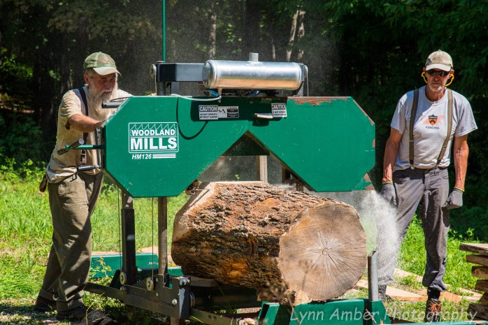 Wood Splitting Blog (7 of 11)