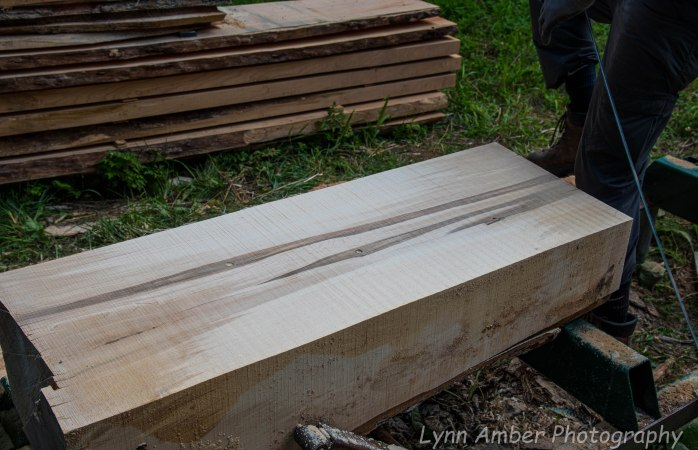 Wood Splitting Blog (9 of 11)